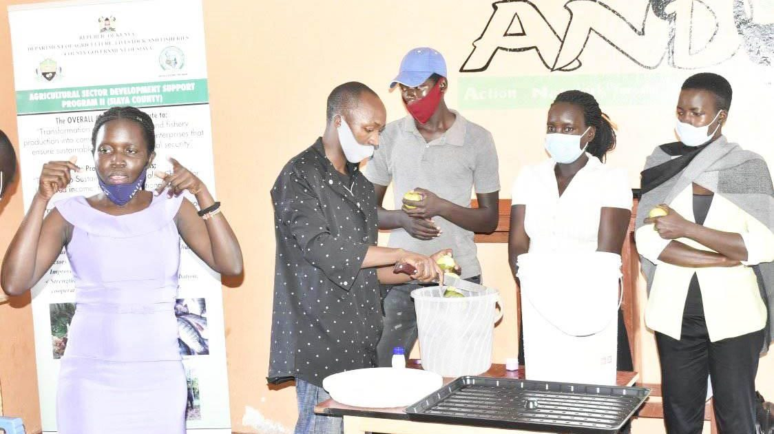 Mango Drying Equipment Aid for the Hearing-Impaired
